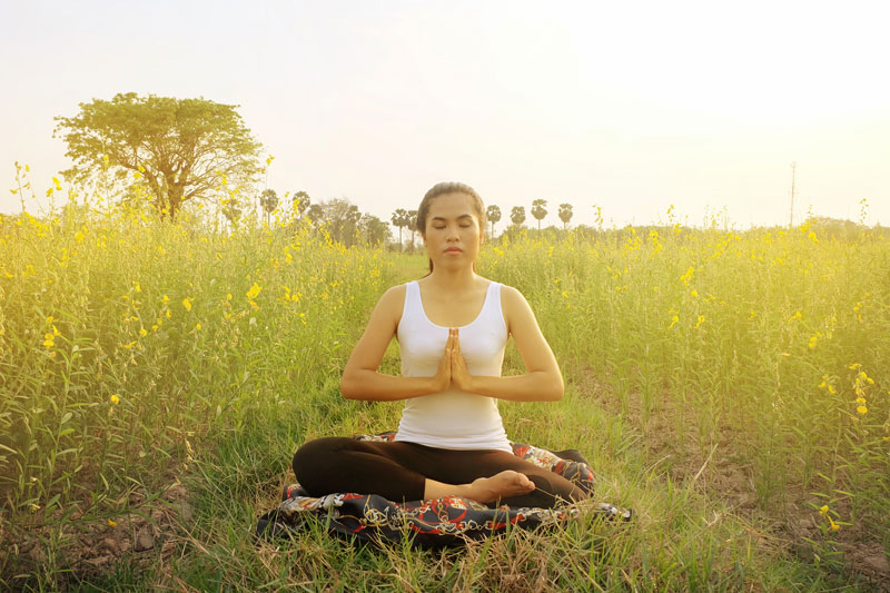 Meditation in Field