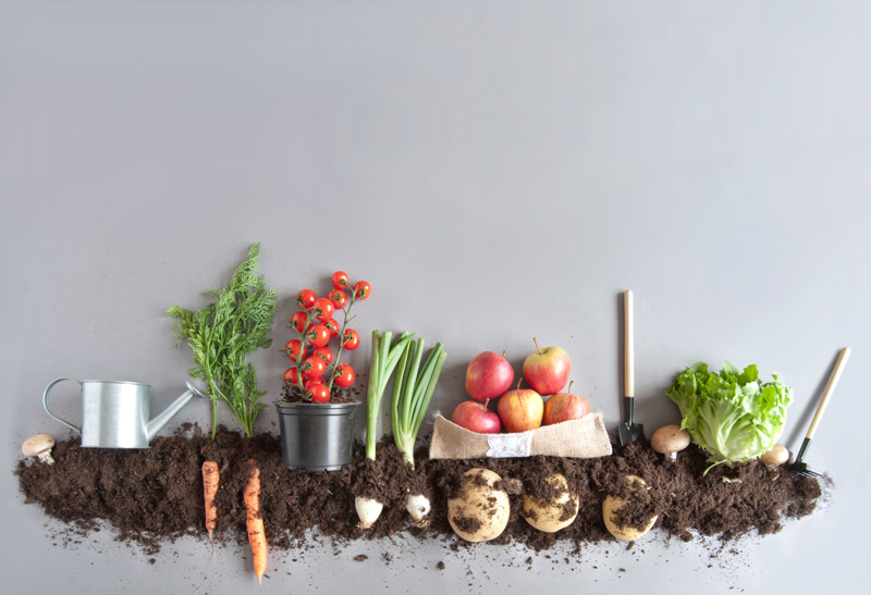 Compost Produce